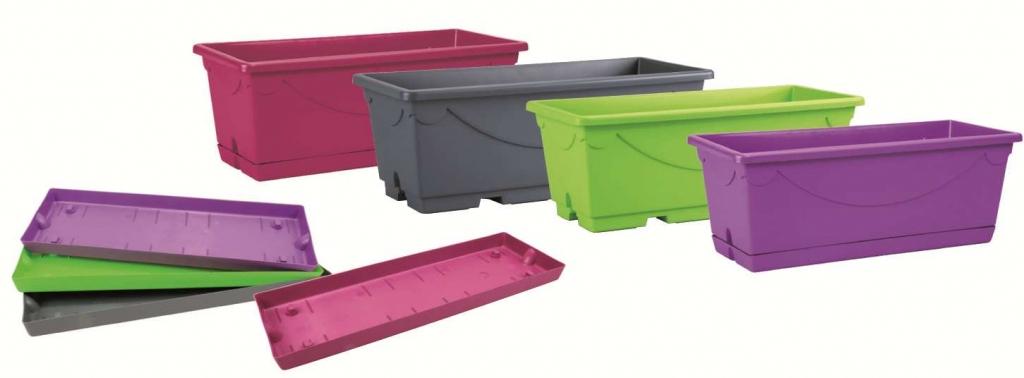 AMBOISE box colori misti